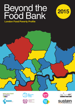 BeyondTheFoodBankReport_FINAL_20152010.cover.png