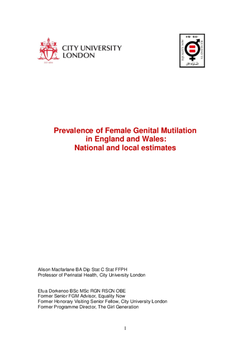 FGM-statistics-final-report-21-07-15-released-text_2Rra6iA.cover.png