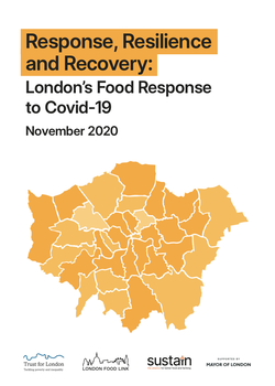 Response, Resilience and Recovery report cover